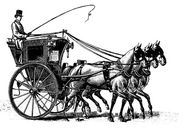 metafore-della-carrozza-fiori-di-bach-rimedi-floreali-bologna-emilia-romagna-1 Triplice Costituzione dell'Uomo