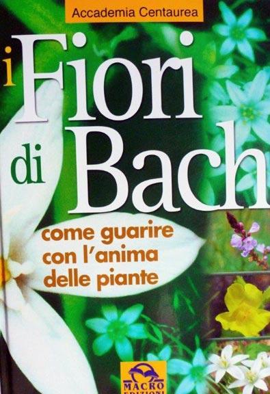accademia-centaurea-fiori-di-bach-rimedi-floreali-bologna-emilia-romagna Edward Bach tra Scienza e Fede