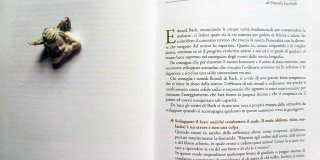 daniela-iacchelli-attitudini-terapeutiche-rimedi-floreali-bologna-emilia-romagna-640x321 Attitudini del Terapeuta