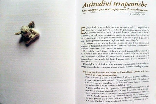 daniela-iacchelli-attitudini-terapeutiche-rimedi-floreali-bologna-emilia-romagna Attitudini del Terapeuta