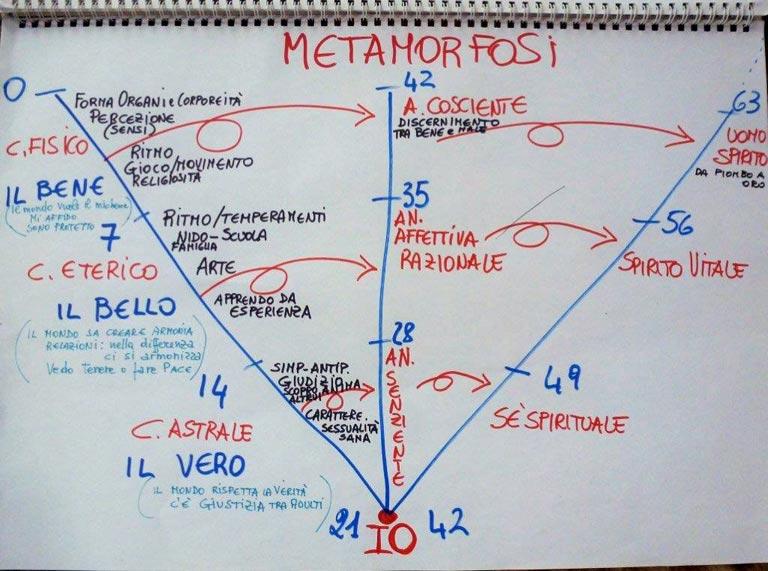 laboratori-biografici-antroposofia-psicosofia-bologna Le chiavi evolutive del divenire umano