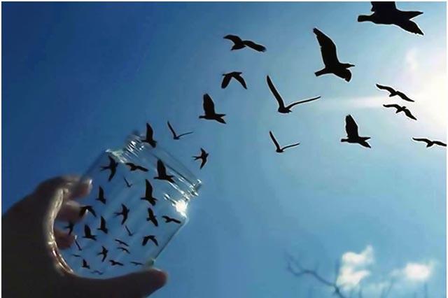 mente-egoica-pratiche-consapevolezza-meditazione-mindfulness-bologna Sei disposto a rinunciare a vecchie strategie per trovare pace?
