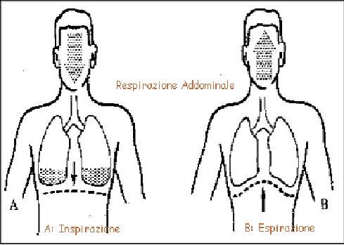 respirazione-addominale-pratiche-consapevolezza-meditazione-mindfulness-bologna Respirazione Completa