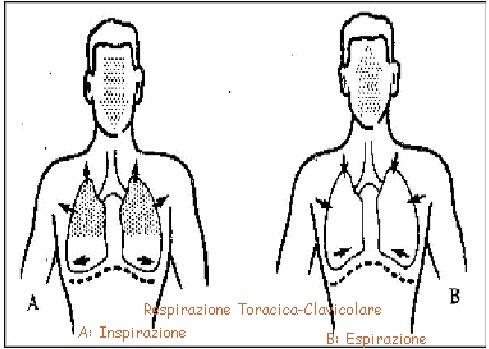 respirazione-toracica-pratiche-consapevolezza-meditazione-mindfulness-bologna Respirazione Completa